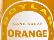 Boylan Orange Review