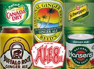Ginger Ale Blind Tasting (Soda Tasting #147)