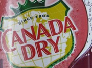 Canada Dry Black Cherry Wishniak Review